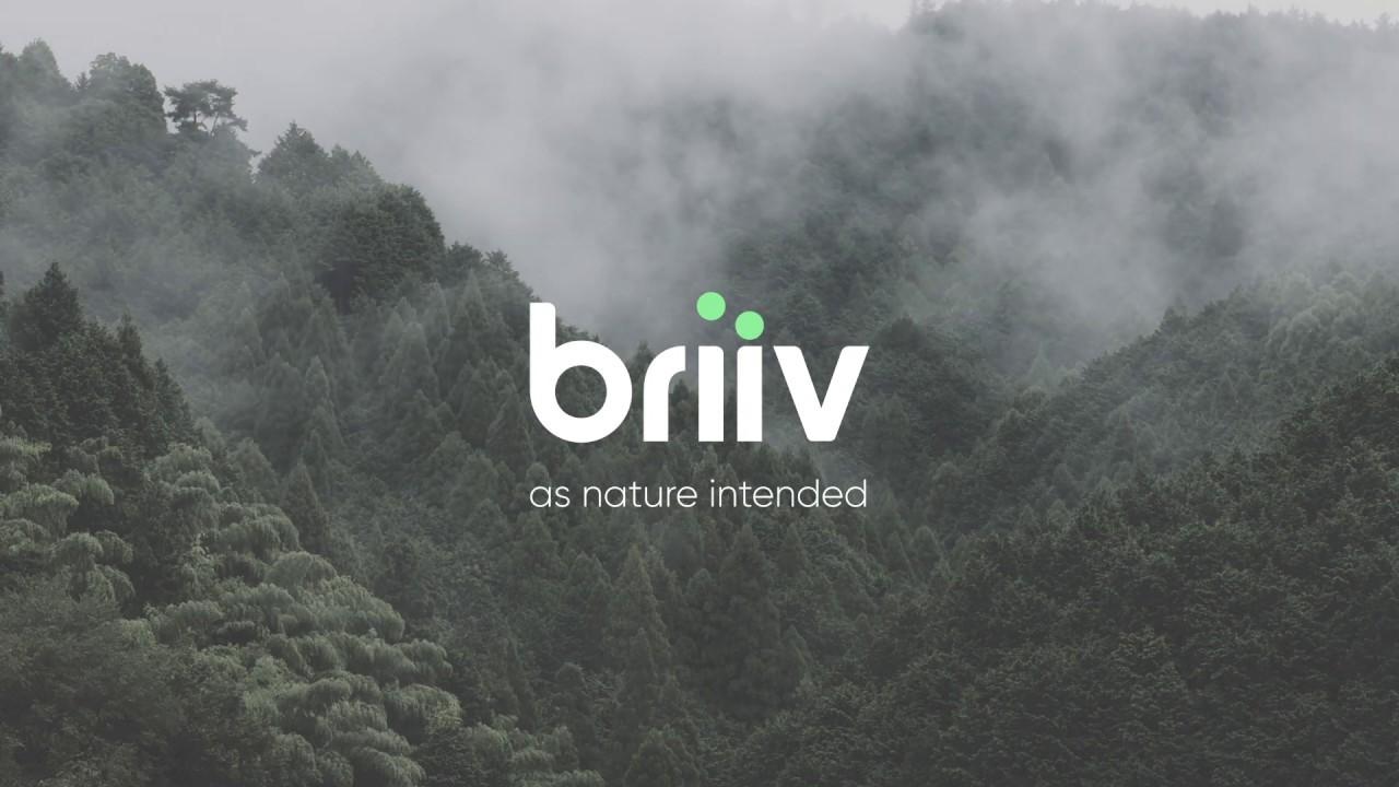 Briiv Air Filter
