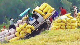 Máy tự chế của nông dân quá khủng quá mạnh quá nhanh rất được việc máy kéo lúa bánh xích chạy lầy