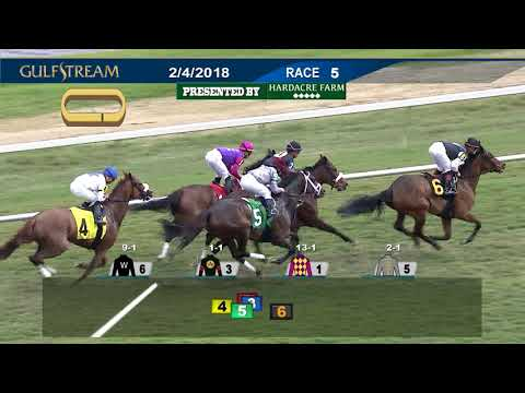 Gulfstream Park Replay Show | February 4, 2018