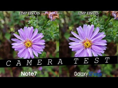 Samsung Note 7 vs Samsung Galaxy S7 Edge - Camera Test Comparison Review! (Curiosity Test)