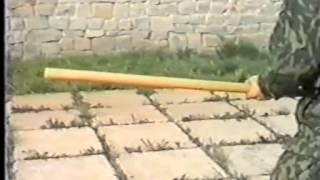 ч27 Штыковой удар #палкой в туловище защита №4 Боевое #самбо, против лома нет приема