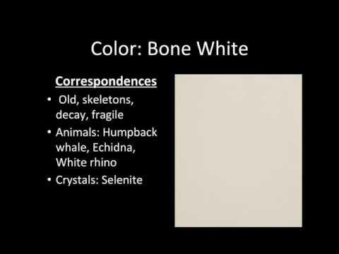 Color Series Bone White