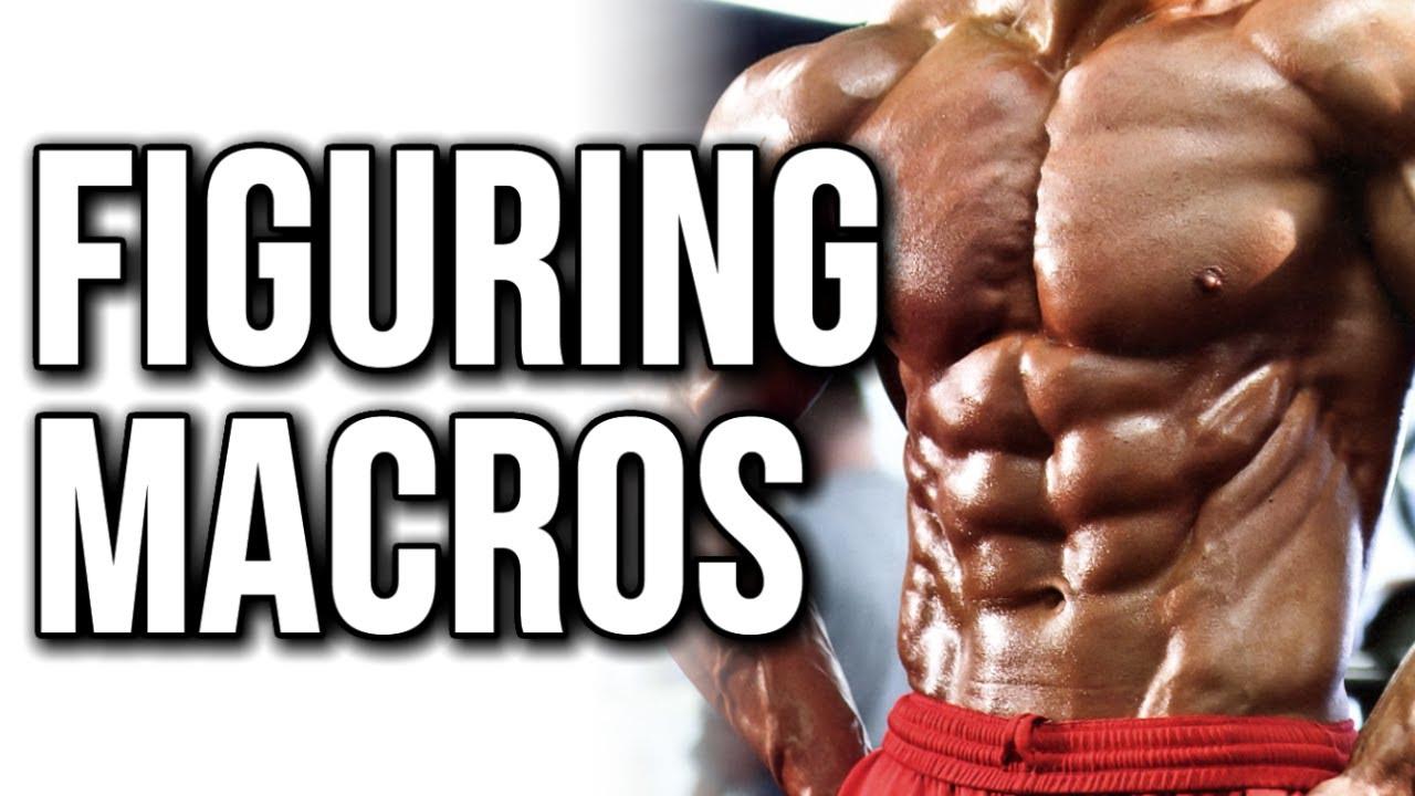 macros calculator bodybuilding