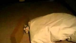 Как правильно укладывать спать