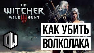 The Witcher 3: Wild Hunt • Ккак убить Волколака