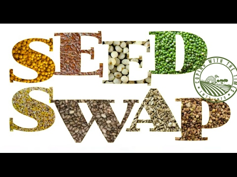 2017 Big Family Homestead Seed Swap Unboxing!