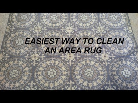 Easiest Way To Clean An Area Rug You
