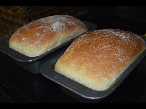 Amish Bread Starter