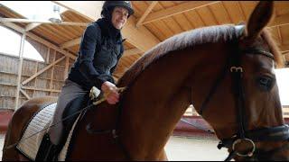 Portrait d' Anne-Frédérique Royon, l'équitation corps et âme - Champions d'Exception - Handisport TV