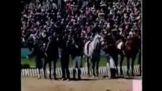 Конный спорт  Олимпиада 80