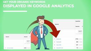 Keyword Hero Review: Reveal Not Provided Keywords in Google Analytics