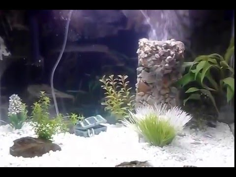 Aquarium tank underwater sand fall sand fountain youtube for Aquarium waterfall decoration