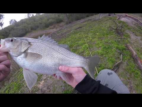 Bass Fishing Victoria With Worms And Lures