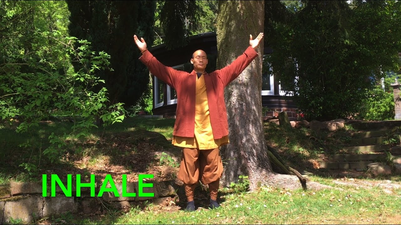 Qi Gong Breathing: 7 Minutes to calm body and mind