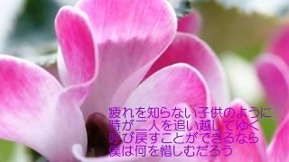 シクラメンのかほり 布施明/小椋佳(オリジナル歌手) 作詞/作曲:小...