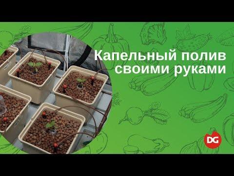 видео: Как собрать капельный полив своими руками