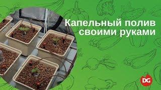 видео Устройство автоматического полива и его виды