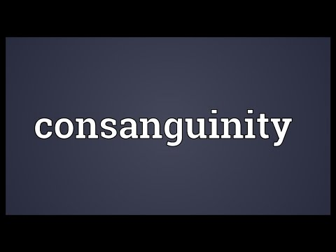 Consanguinity Meaning