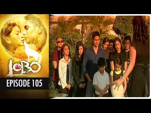 Lobo - Episode 105