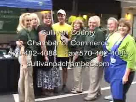 Sullivan County Chamber of Commerce.  Go Joe Sweet 16 Party