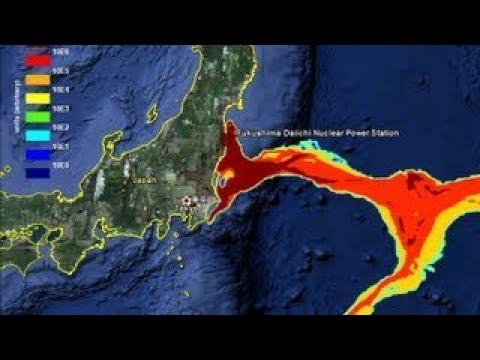 Fukushima The Coming Global Disaster