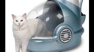 Закрытый туалет для кошек_Размеры кошек