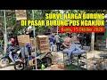 Surve Harga Murai Batu Kacer Kepodang Dan Lain Lain Di Pasar Pds Nganjuk Jawa Timur  Mp3 - Mp4 Download