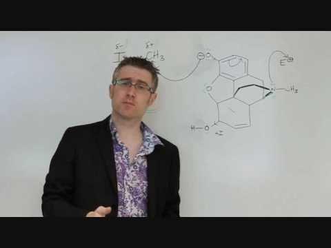 Codeine Tutorial - Professor Dave
