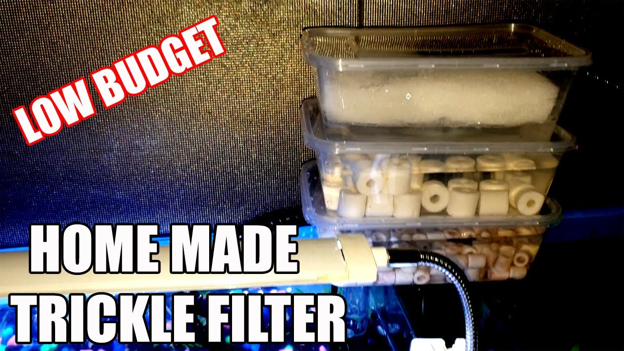 DIY Trickle Filter Mini | Top Filter Aquarium