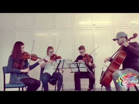 Shape of You String Quartet Cover