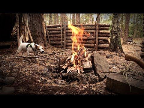 Bushcraft Camp with my Dog - T-Bone Steak on the Camp Fire (SHOW US YOUR STEAK CHALLENGE)