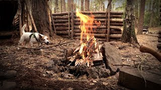 Bushcraft Camp with my Dog - T-Bone Steak on the Camp Fire (SHOW US YOUR STEAK CHALLENGE)