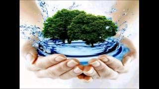 Экологические ресурсы. Урок биологии.