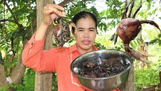 Amazing Cooking Crabs Soup Delicious Recipes -  Eating Crabs Soup Delicious   - Primitive Technology