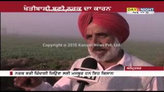 Farmers along India-Pakistan border facing problems | Amritsar