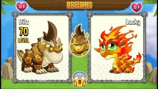 NEW BREEDING: Double Terra Dragon & Double Flame Dragon [EXCLUSIVE ...