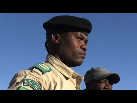From war to wildlife: fighting for Angola's future