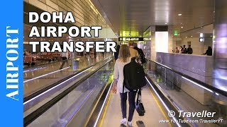 TRANSFER at Doha Airport - Connection flight at Hamad International Airport - Airport video