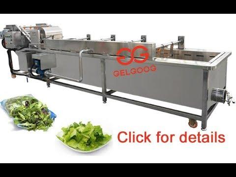 Automatic Vegetabe Salad Washing Machine