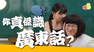 【母語】香港人,一定要識廣東話❗️😡|Pomato 小薯茄
