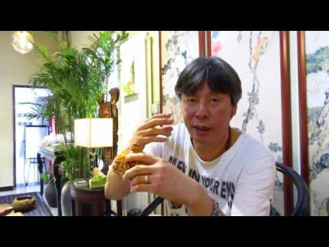 Haiying in Beijing 2016 - Chat with a curiosity store owner