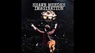 Shaw Mendes Imagination 8d