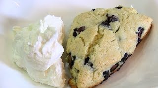 Blueberry Scones & Clotted Cream