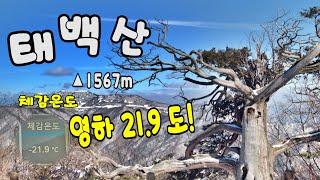 등산 올겨울 최고한파 태백산ㅣ체감온도 영하22도ㅣ태백산…