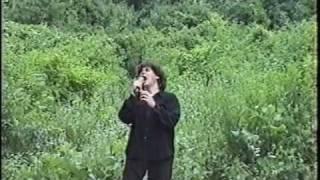 U2 - Shadows and tall trees - Version I.