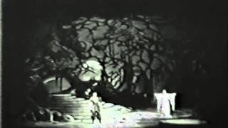 Turandot: Principessa di morte! Principessa di gelo!