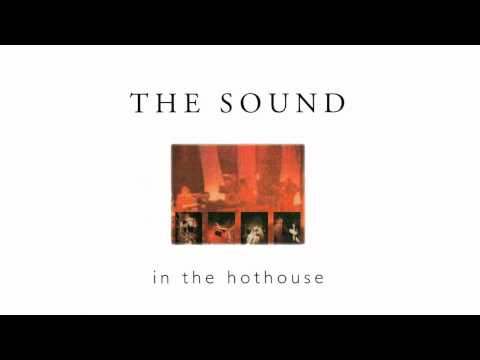The Sound - Wildest Dreams [Live] (HQ)