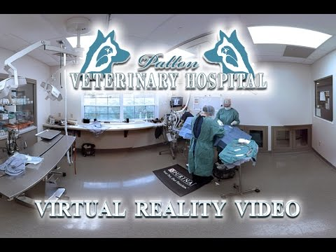 Patton Veterinary Hospital Tour