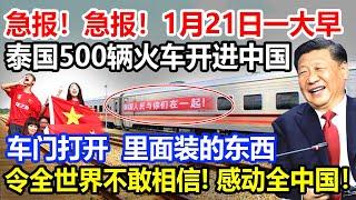 急报急报1月21日一大早泰国500辆火车开进中国车门打开打开一瞬间里面装的东西令全世界不敢相信感动全中国