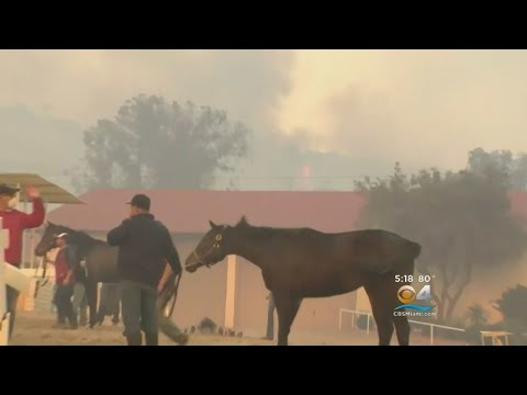 California Fires Stretch From North Of Los Angeles To San Diego County